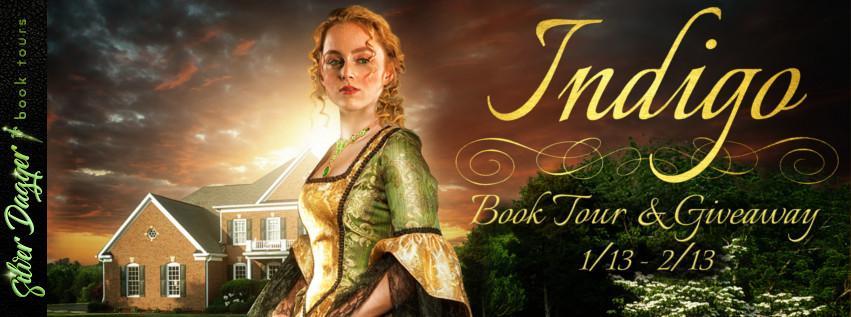 #Win $25 Amazon #BookTour #Giveaway #BookBoost #TimeTravel #Romance #Adventure #Indigo @pberinstein #IndigoBookSeries