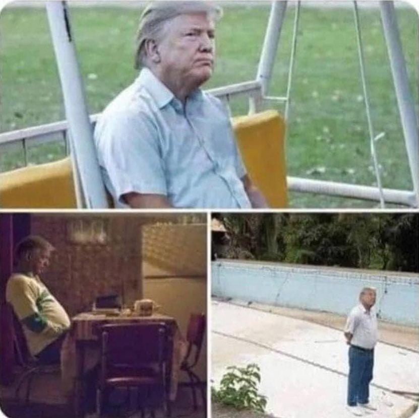 Cuando tienes un mal día pero no puedes tuitearlo #ByeByeTrump
