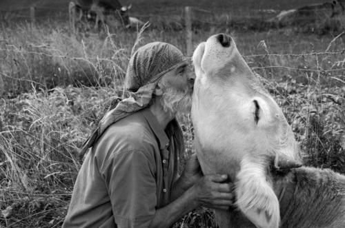 You will know #humanity has turned a corner when we quit treating #animals simply as trinkets and disposable commodities.   .  #AnimalRights  #caring #nature  #love #compassion #Tuesdaythought