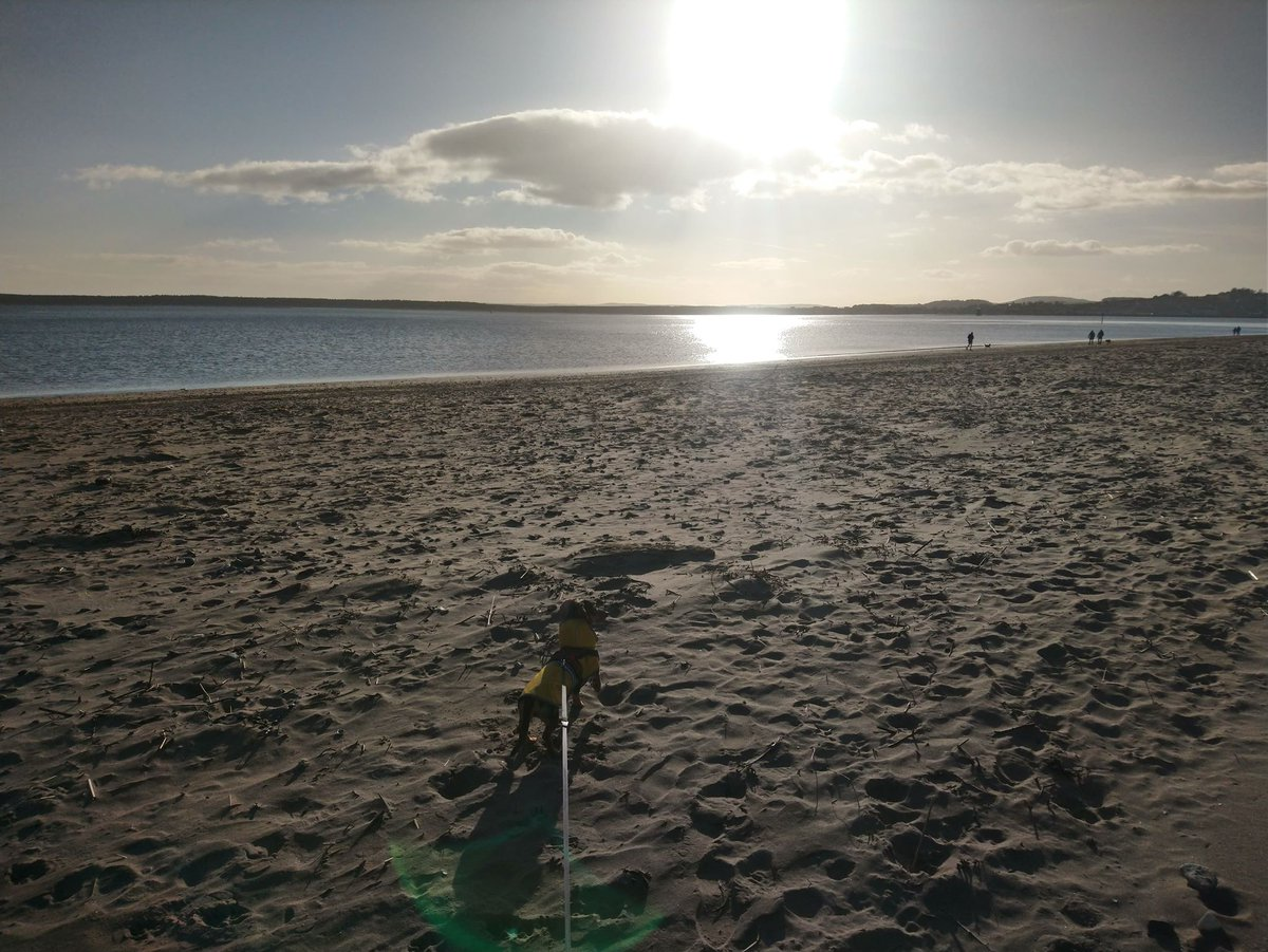 Pictures from fishing trips and journeys around Scotland with our partner page @AdventuresJocks (to be continued after lockdown)  BROUGHTY FERRY - My hometown  @SGH_RTs @BlazedRTs @sme_rt #twitch #animals #nature #ArtistOnTwitter #fishing #uk #Microsoft #Scotland #photography