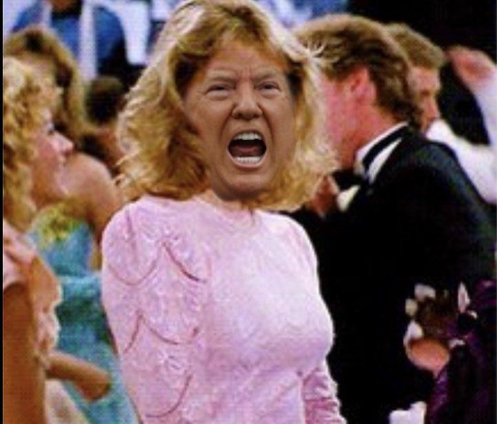 Done- @KristySwansonXO #FuckTrump #WorstPresidentEver #CancelCulture #ByeByeTrump #BidenHarris2020