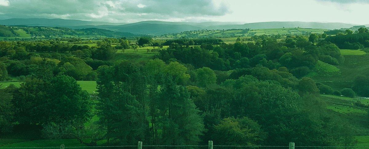 #Northumberland #photography #photo #photooftheday