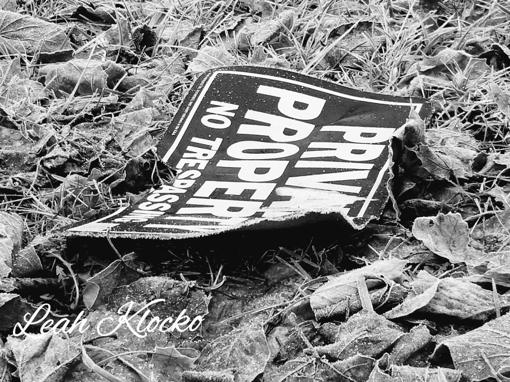 Today's B&W #blackandwhite #blackandwhitephotography #blackandwhitephotos #blackandwhitephoto