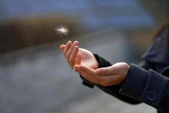 Replying to @majed_Jaafr: ما يكتبه الله خيرٌ مما نحبّ، وأعظم مما نطلب، وألطفُ مما نشاء .. فاللهم لك الحمد ولك الشكر ..