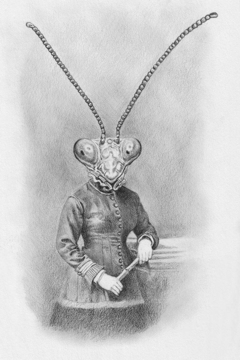 Mantis by Caitlin Rose Davis #fantasyart #insects #mantis #SURREALISM #blackandwhite #drawing #MutantFam