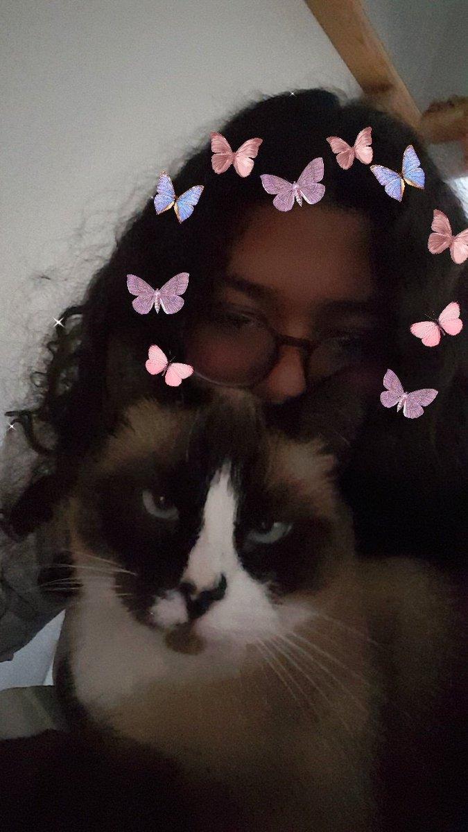 mrow! why did i meow?    ~#hispanicmcyttwtselfieday     ~rts are okay!    ~ pls be nice
