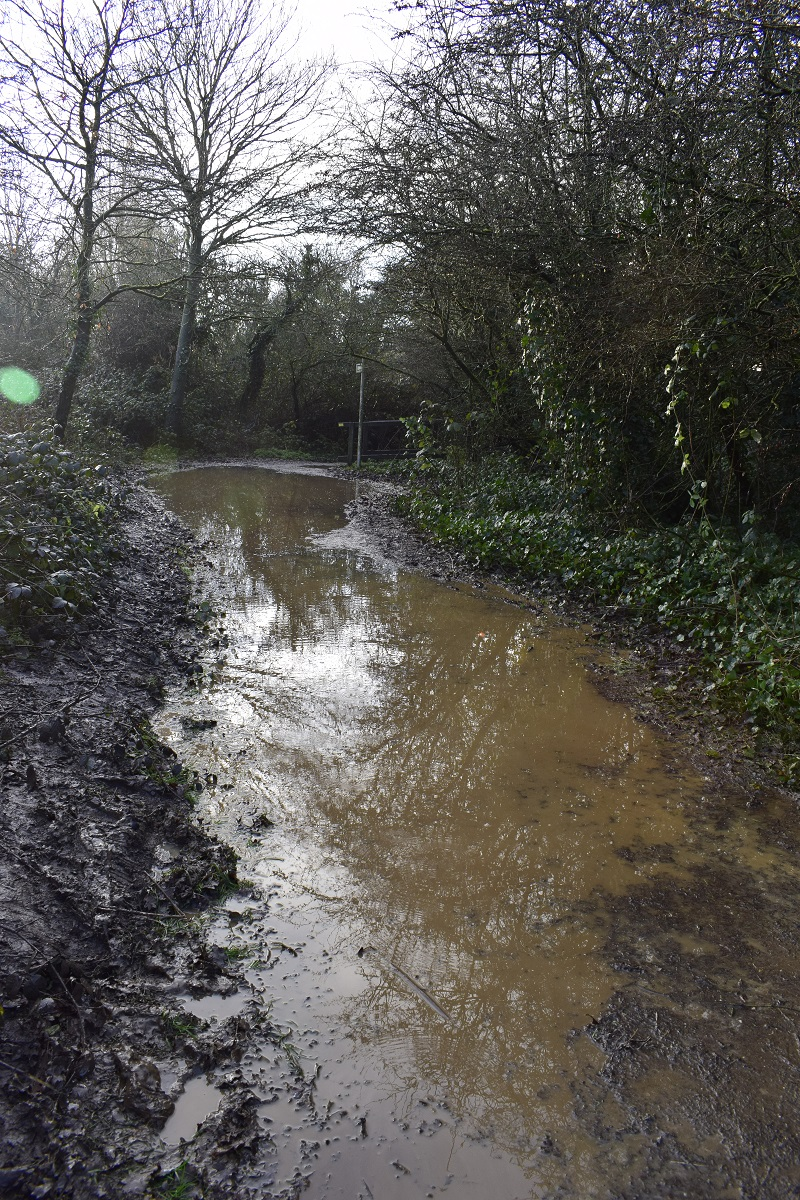 This was on Saturday 16/1/21 at Paradise Fields. The weather forecast 20/1/21 is for heavy rain. When are we going to take this seriously? #runoff #flooding #Greenford @CllrAKelly @DrAyshaRaza @juliangbell @GregoryStafford @meenahansgreen @jamesmurray_ldn