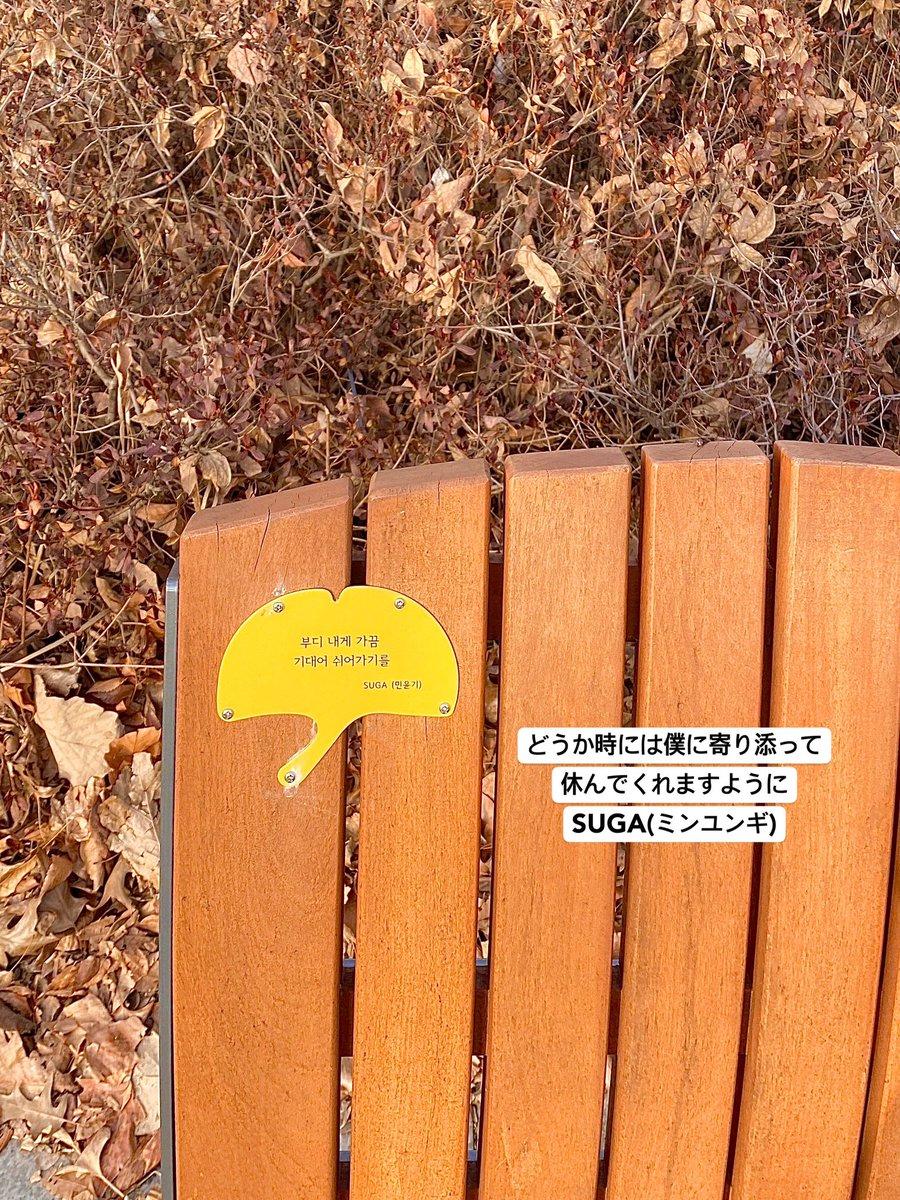 この前Seoul Forest Parkへ行ってきました!🌲 ここには沢山の芸能人のベンチも設置されていて、散歩にもぴったりだし周りにはお洒落なカフェも沢山あります✨🥰是非韓国に来られる際にはオススメしたいスポットの一つです❄️❄️ #韓国 #韓国情報 #ソウル #韓国旅行 #BTS #kpop