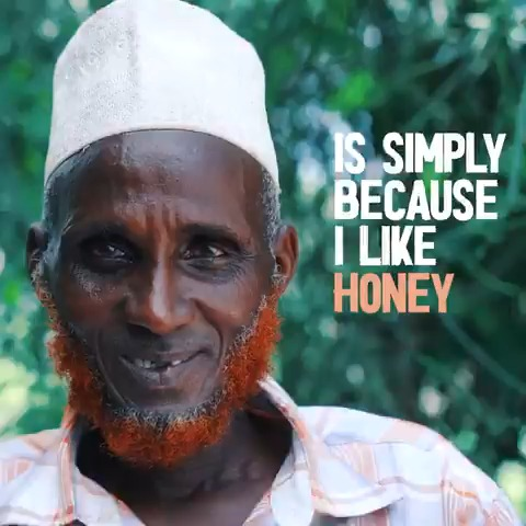 Do you like honey? If so, this story is for you 🐝👇  Since Rashid received bee hives from @WFP_Kenya, his life has been sweeter. The hives help: 🐝 Strengthen smallholder businesses 🐝 Diversify incomes 🐝 Address nutritional needs 🐝 Cushion livelihoods against climate shocks
