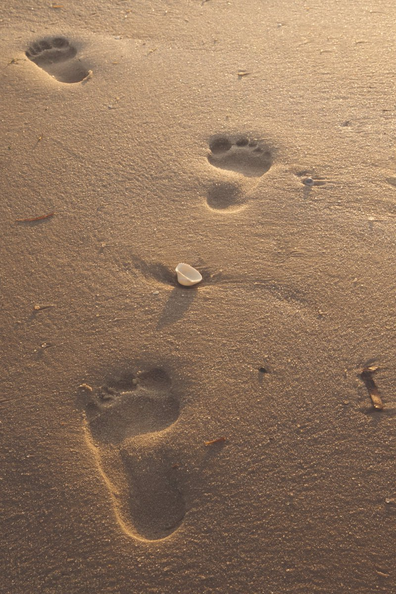 #Wellbeing remains a priority at the moment for all. We may be at home, confined to the kitchen or home office, but that doesn't mean we can't plan for when we can travel again; to meet with distant loved ones or simply feel the sand between our toes once more. #ABTOTprotected