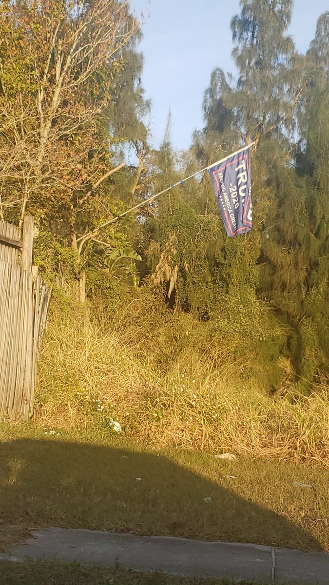 In honor of #InaugurationDay I want to share with yall this picture I took (yesterday, give it up dude) of a Trump flag hanging literally....over a swamp.   (Trust me, past the grass it goes straight down into swampland)  #TrumpsLastDay  #BidenHarrisInauguration  #POTUS46