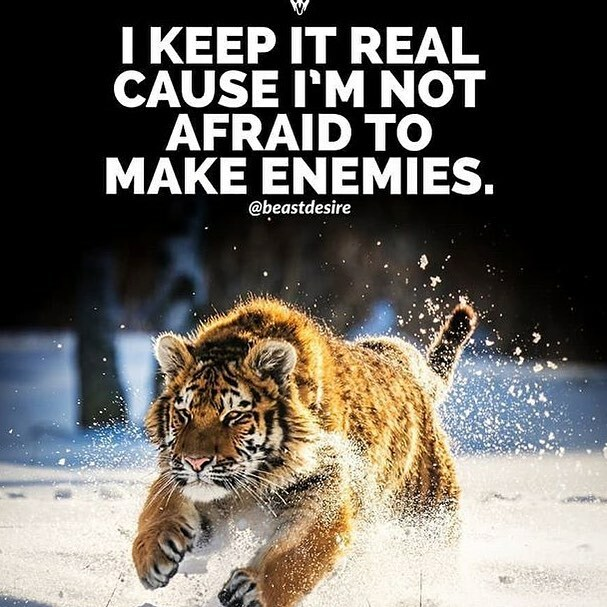I keep it real cause I'm not afraid to make enemies. |  #gamechanger #legendquotes #thinkbig #openminded #helpothers #reasdaily #speakless #domore #mindblown #quotestoliveby #youareking #dogood #positivethinking #happy #successtwilight #readtolead #lea…