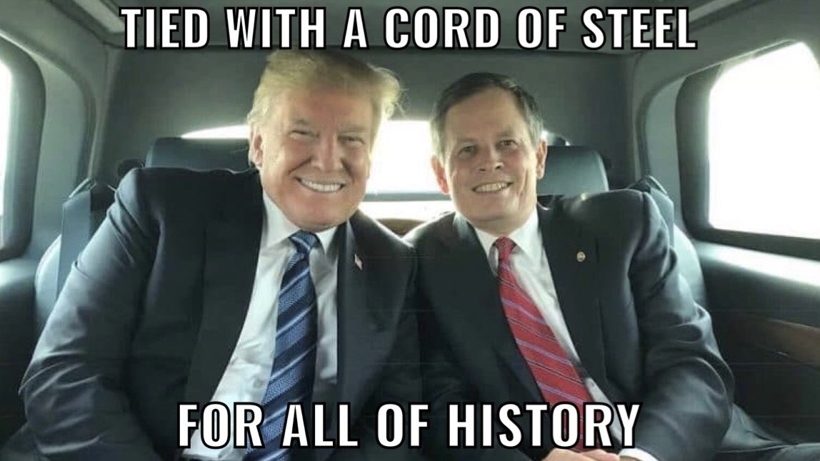 """@SteveDaines @JoeBiden """"We're going to walk down to the Capitol... to cheer on our brave senators and congressmen... and we're probably not going to be cheering so much for some of them. Because you'll never take back our country with weakness. You have to show strength."""" -@realDonaldTrump, 1/6/21"""