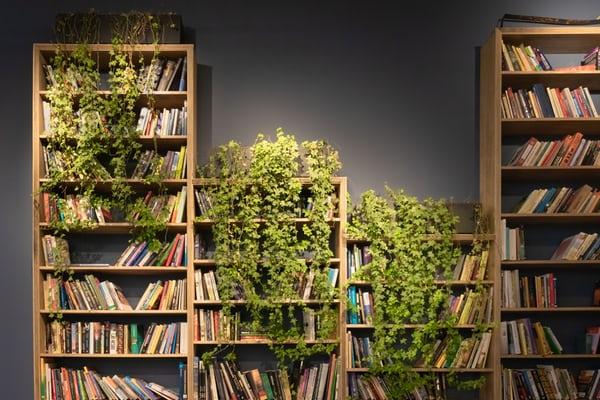 Как подобрать книжный шкаф