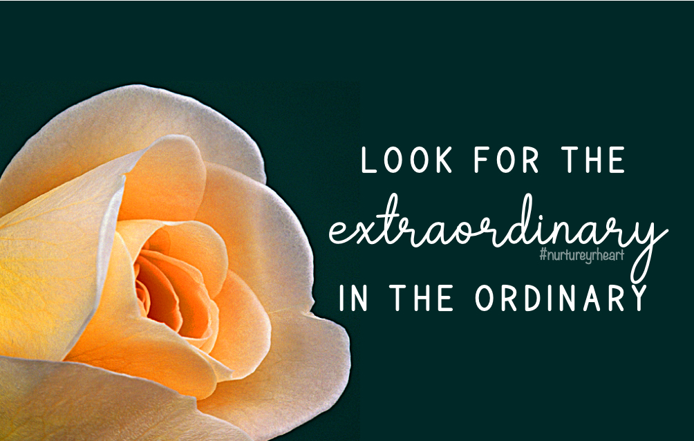 """Look for the """"extra"""" every day! #GrowinGreatness #Greatitudes have a #bestdayever #nurtureyrheart #WednesdayMotivation"""