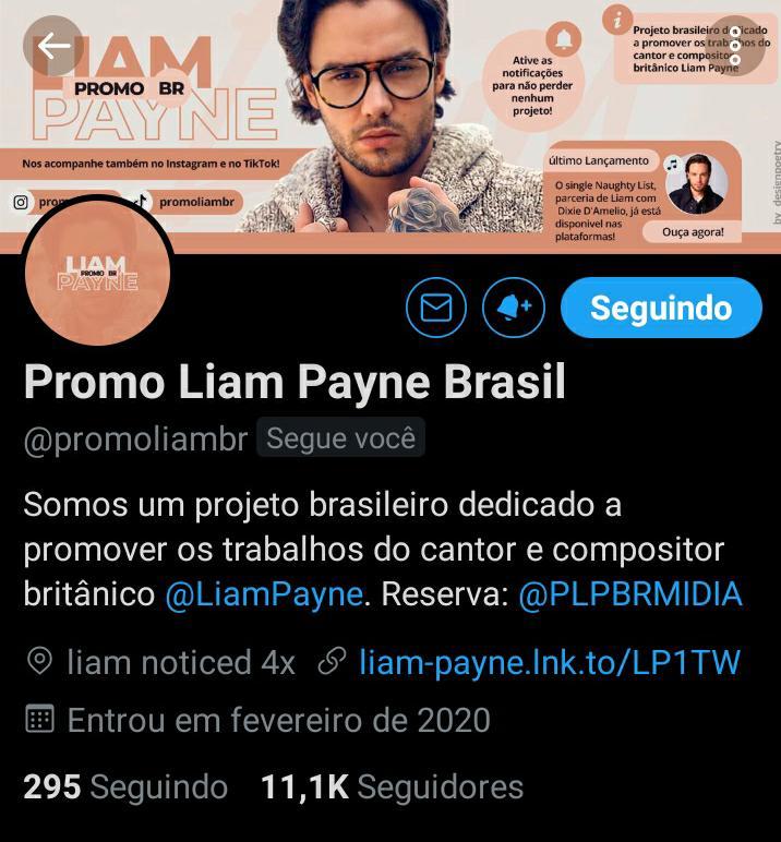 Pessoal Bom dia, infelizmente a nossa conta principal @promoliambr foi suspensa pelo Twitter por direitos autorais. No momento estamos tentando recuper-lá, queremos continuar com o nosso sonho de fazer o @LiamPayne ser ainda mais reconhecido. Por favor, ajude compartilhando.