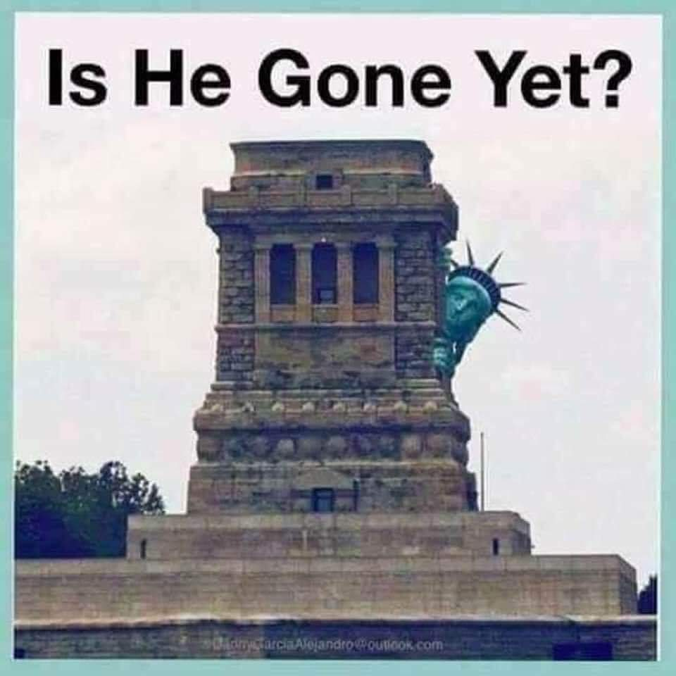 One last cathartic meme/graphic Tweet for today is a new day, a good day, because the adults have entered the room, dare I say the house- The People's House and they're ready to get work! Bye bye Cheeto-in-chief. #ByeByeTrump #ByeTrump #ByeDon