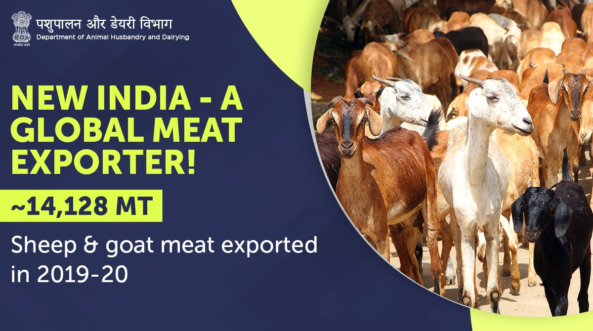 #NewIndia Exported meat worth ~USD 90.8 Mn during 2019-20!  #Unite2FightCorona #AnimalHealth #HealthyAnimals
