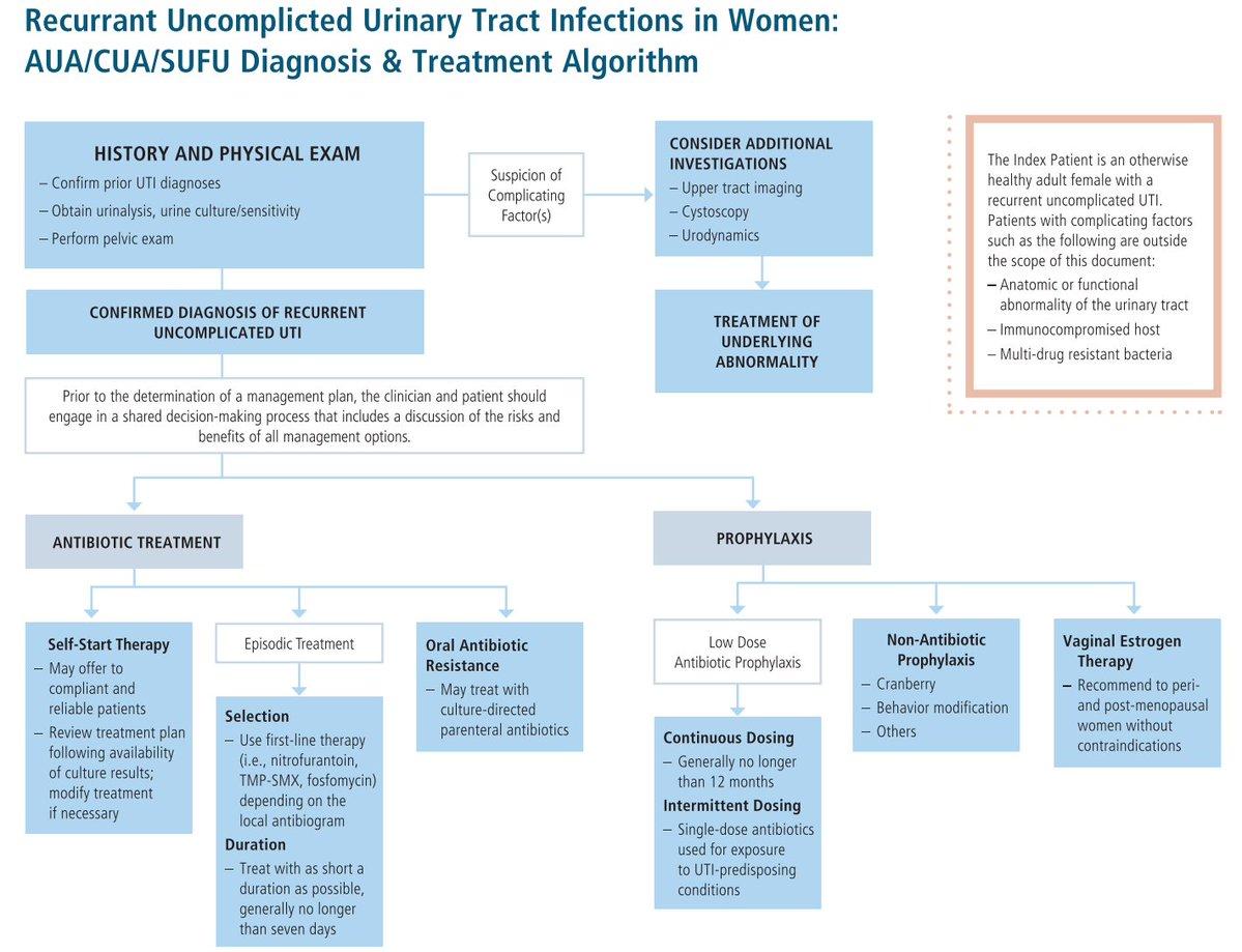 #itfGrandRounds w  @dresataydin   under supervision of Prof. Taner Koçak @JUrology   Recurrent Uncomplicated UTI in Women: AUA/CUA/SUFU Guideline  ▶️https://t.co/PRP5dkX6Gh https://t.co/vP6MAVh0WG