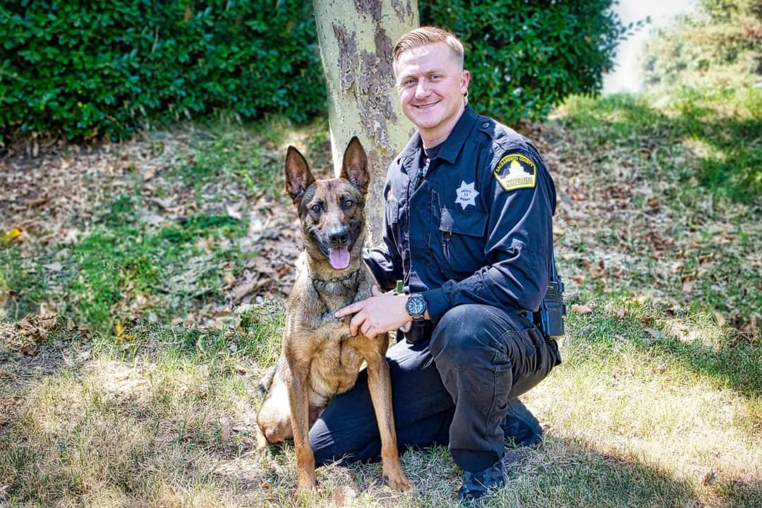 Rest In Peace @sacsheriff Deputy Adam Gibson & K9 Riley who were shot & killed on 1/18/21 while trying to apprehend a parolee. He was a veteran of the @USMC & leaves behind a wife & baby. Please retweet to honor them 😞🖤💙🐶 #BlueLivesMatter #BackTheBlue #EnoughIsEnough