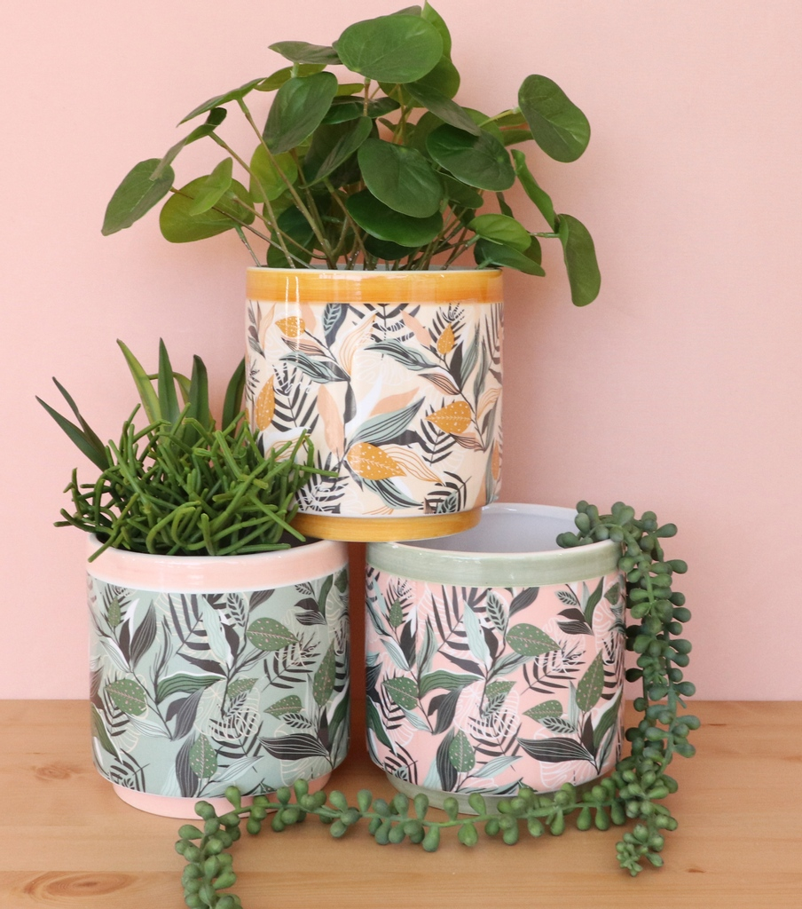 How stylish are our Foliage planters? What plants would you put in yours?  🏷 #cactus #succulent #indoorplants #plants #indoorjungle #plantsmakepeoplehappy #houseplants #plantsofinstagram #plantsmakepeoplehappy #plants #succulentlove #plantgoals #houseplantsofinstagram
