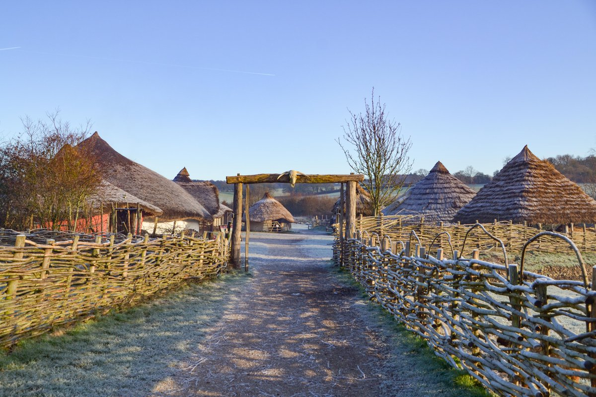 A wintery scene approaching our Iron Age enclosure (it's been very soggy on the farm so we're reminding ourselves of recent blue skies!)  A huge thank you for all the support and shares on our crowdfunding post yesterday and to everyone who has donated so far - thank you! ❤️ https://t.co/qnYmxYZst9