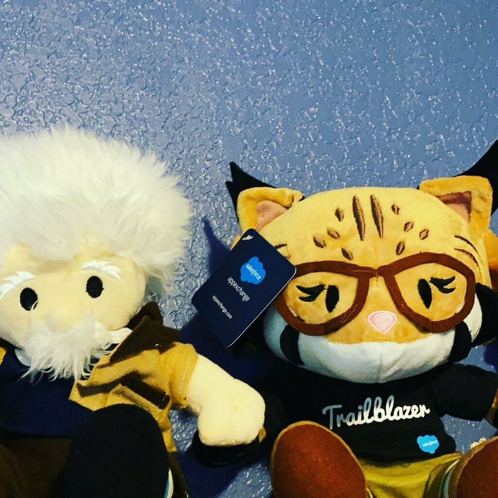 #salesforce #einstein and #appy are friends that sit together 👀  . . . #coding #salesforce #salesforceohana #salesforceeinstein #appexchange #partnerforce #salesforcepartner #goappirio #softwareengineer #programmer #tech #technology #instatech #softw…