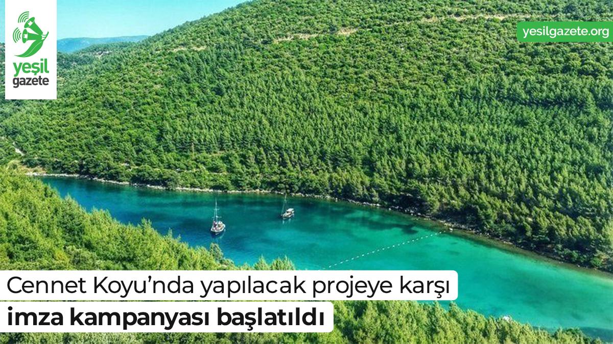 Cengiz Holding'in bünyesinde bulunanBodrumbir Turizm Yatırım A.ŞMuğla'nınBodrum İlçesi'nde bulunanCennet Koyu'na dört adet mendirek yapısıyla iki adet plaj yapmayı planlıyor.  Ayrıntılar: https://t.co/DmWz3i3e23  #yeşilgazete #doğamücadelesi #cennetkoyu @ChangeTR https://t.co/1sLAMaBo7J