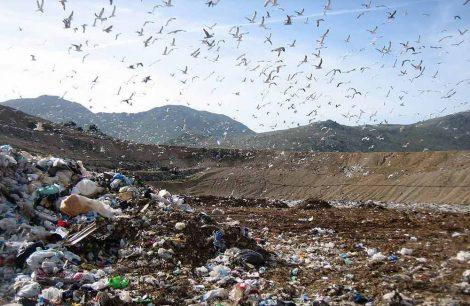 Via libera alla copertura della sesta vasca di Bellolampo, scongiurata nuova emergenza rifiuti - https://t.co/5ztKeu3rGb #blogsicilianotizie