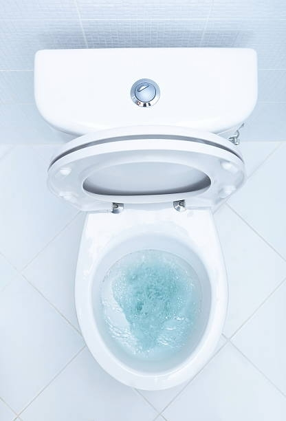 Flushing the toilet consumes about 38 percent of the average U.S. household's water usage. #DidYouKnow #Plumbing