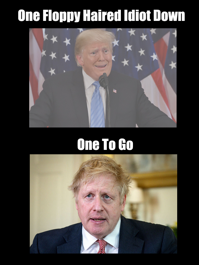 Now that #Trump in no longer the president, that only leaves @BorisJohnson as the only bleach blonde, floppy haired imbecile in charge. #OneDownOneToGo #GetHimOut