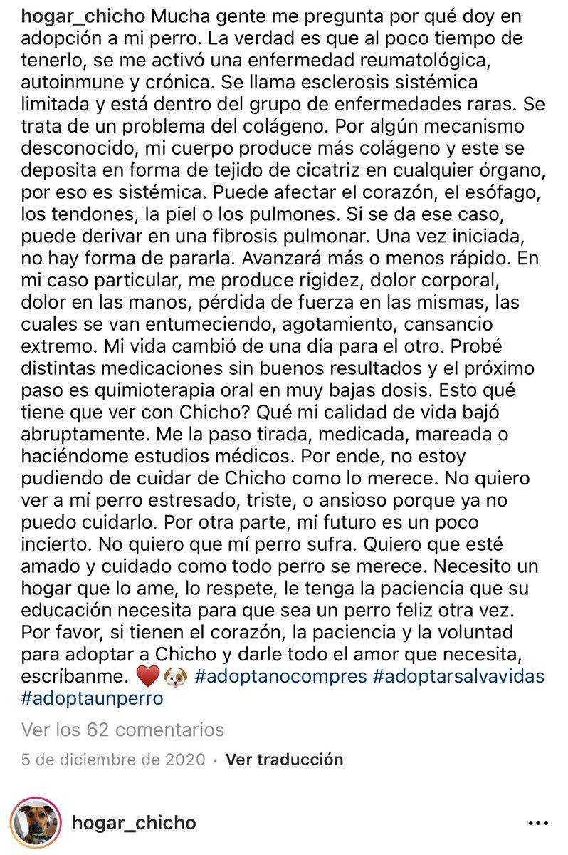 Chicho necesita ser adoptado, su humana padece una enfermedad, es un caso muy triste y ojalá que entre todos podamos ayudar a darle un final feliz encontrándole una familia para llenarse mutuamente de amor. 🙏🏻 RT🥺 Interesados en adoptarlo, contactar con:  https://t.co/pKvZpOPV1k https://t.co/XayXhyFpXP