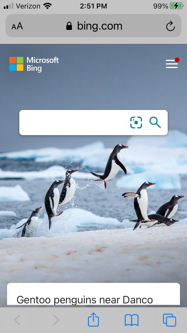 Bing seems to have a visual representation of last night's game on their homepage! #LetsGoPens