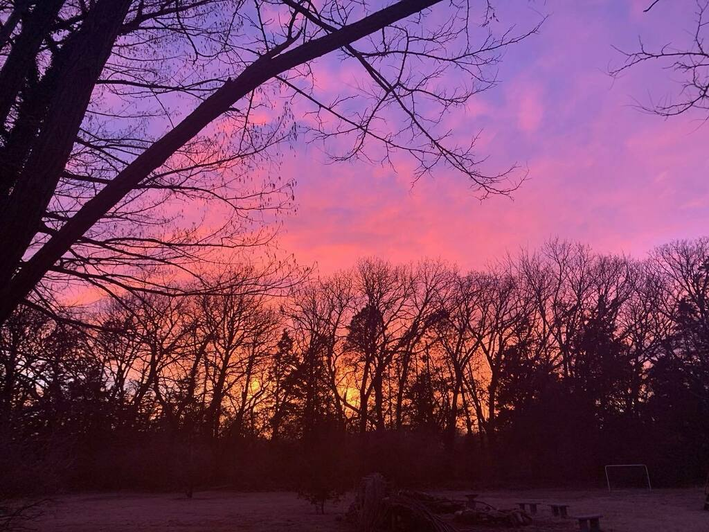 """Jasper just took this in the backyard.   """"Have you ever seen anything so full of splendor?""""  #nofilter #sunset #wichita #backyard #trees #paintedsky"""