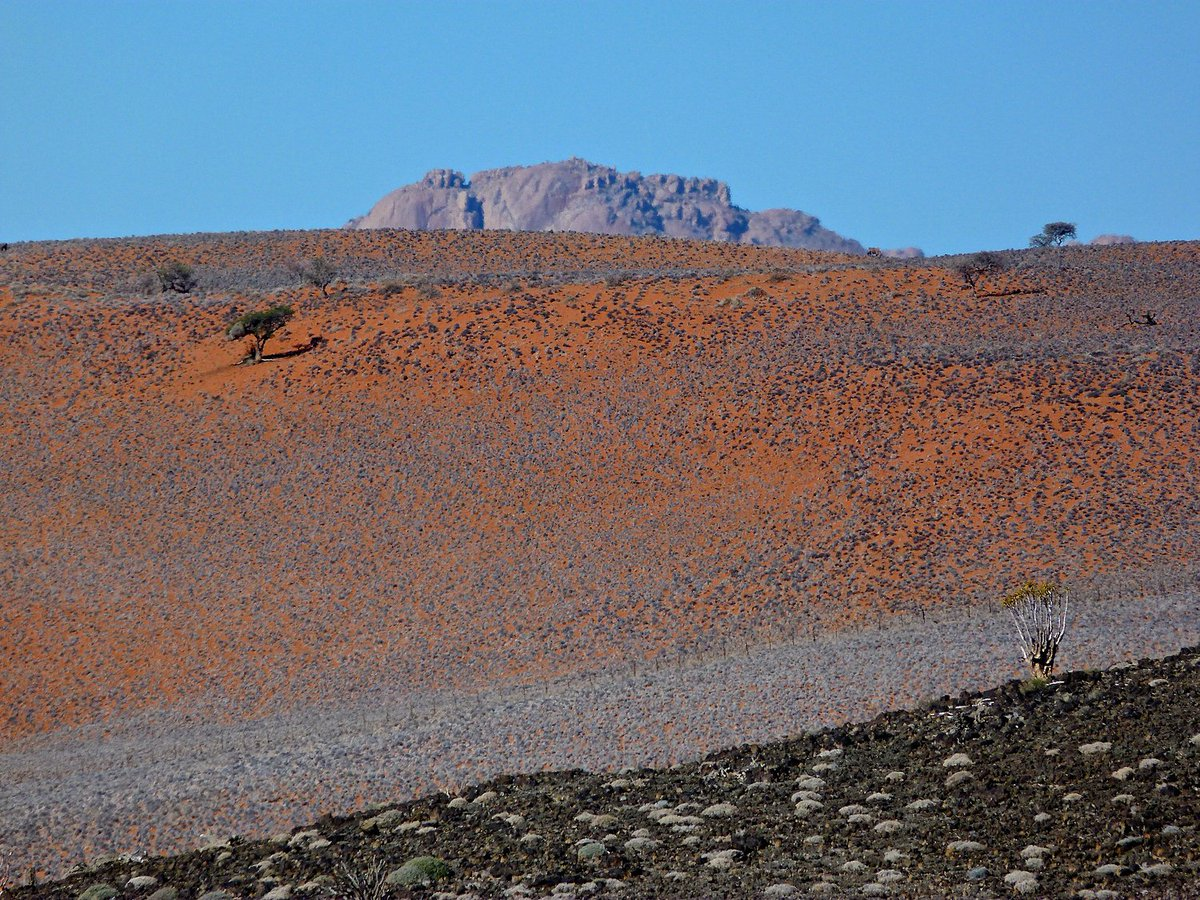 Missing #fieldwork Aus, Namibia, for Granulites&Granulites 2015 Gorgeous Rocks! #geology #rocks #namibia #granulites #fieldwork