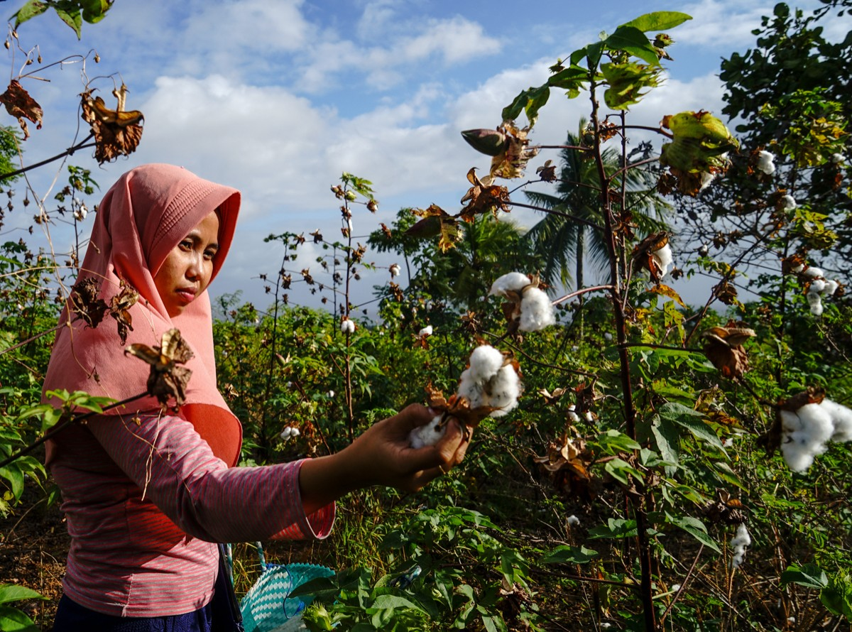 How do we finance the cost of #ClimateChange? In 2018, Indonesia issued the 🌏's first Green Sukuk bond, generating +$2.75 billion for green energy & infrastructure. See how we're supporting 🇮🇩 to diversify financing for #ClimateAction.   #AdaptationSummit
