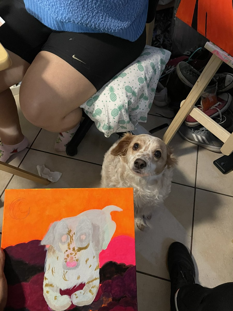 @pokimanelol @CashApp Hey @pokimanelol this my son polar bear he likes long walks and belly rubs 🐶I tried my best hope you see this 😩 $thejstrs #CashAppPoki