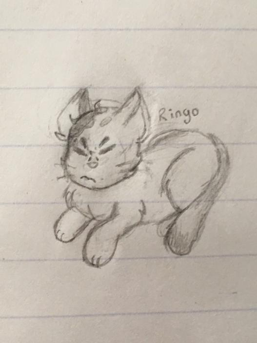 @pokimanelol @CashApp Hiiiii, this is a drawing my friend @JJLeviathan made of my cat, his name is Ringo :)  My $Cashtag is $LordAylor, if I win i promise I will buy him a ton of treats #CashAppPoki