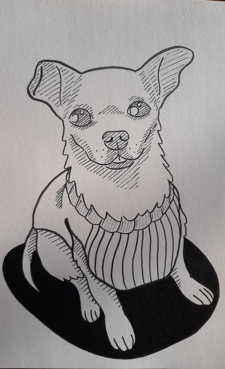 @pokimanelol @CashApp First time joining a giveaway so here's my dog casper, this gave me an excuse to actually draw him   $Villarreal333  #CashAppPoki