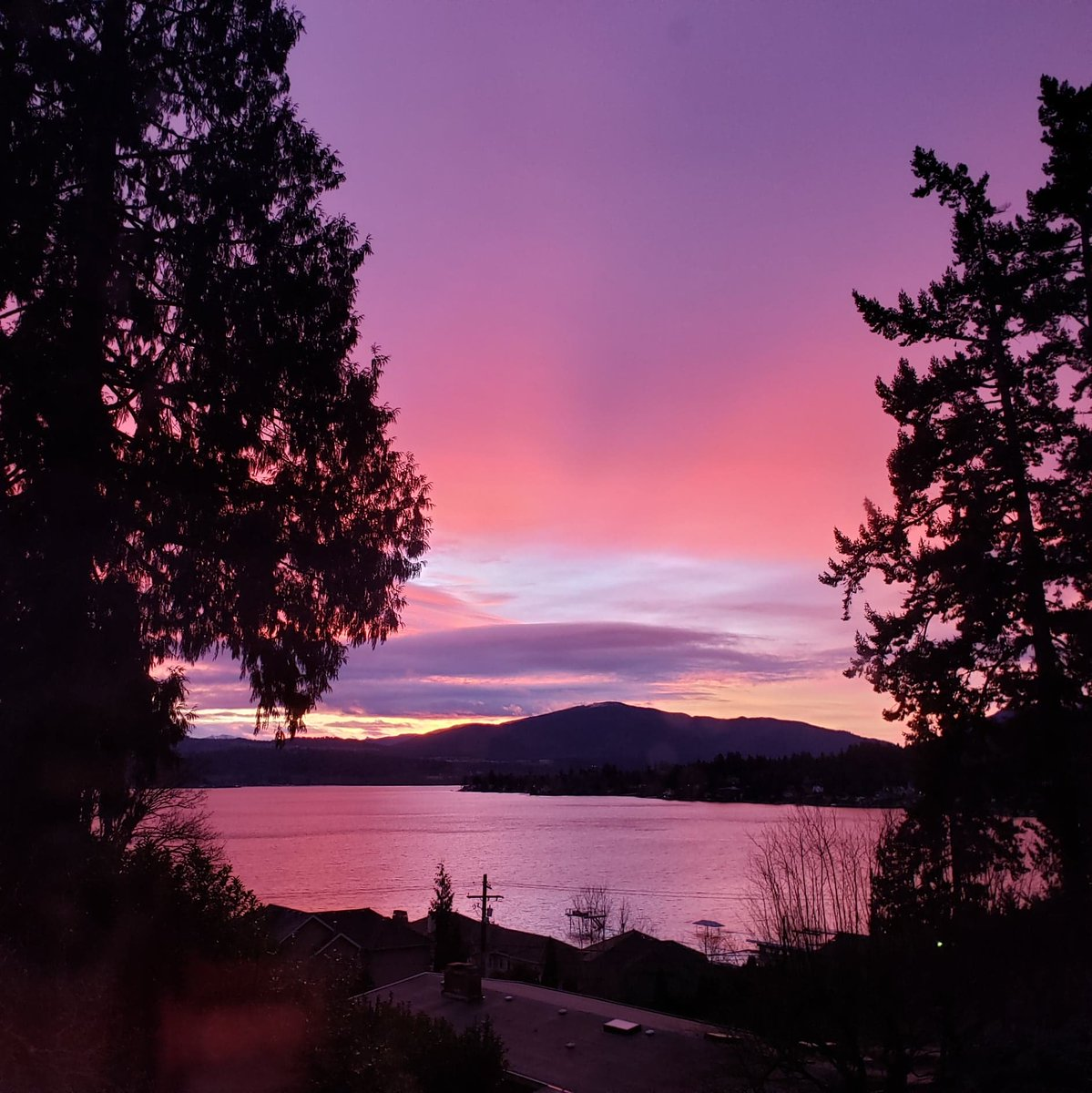Only hearts can make a home. We ensure your heart is in the right Abode. 💜   #HomeInspection #HomeInspector #SeattleHomeInspector #BellevueHomeInspector #AbodeAnalysis #NoFilter