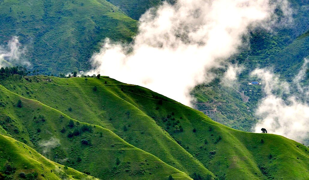 Top 10 places to visit when in Chail If you and your family need a peaceful place to get away from the hustle and bustle of the city crowd, Chail is the best place you should be. Read more:  #chail #himachal #hills #hillstation #family #placestovisit #india