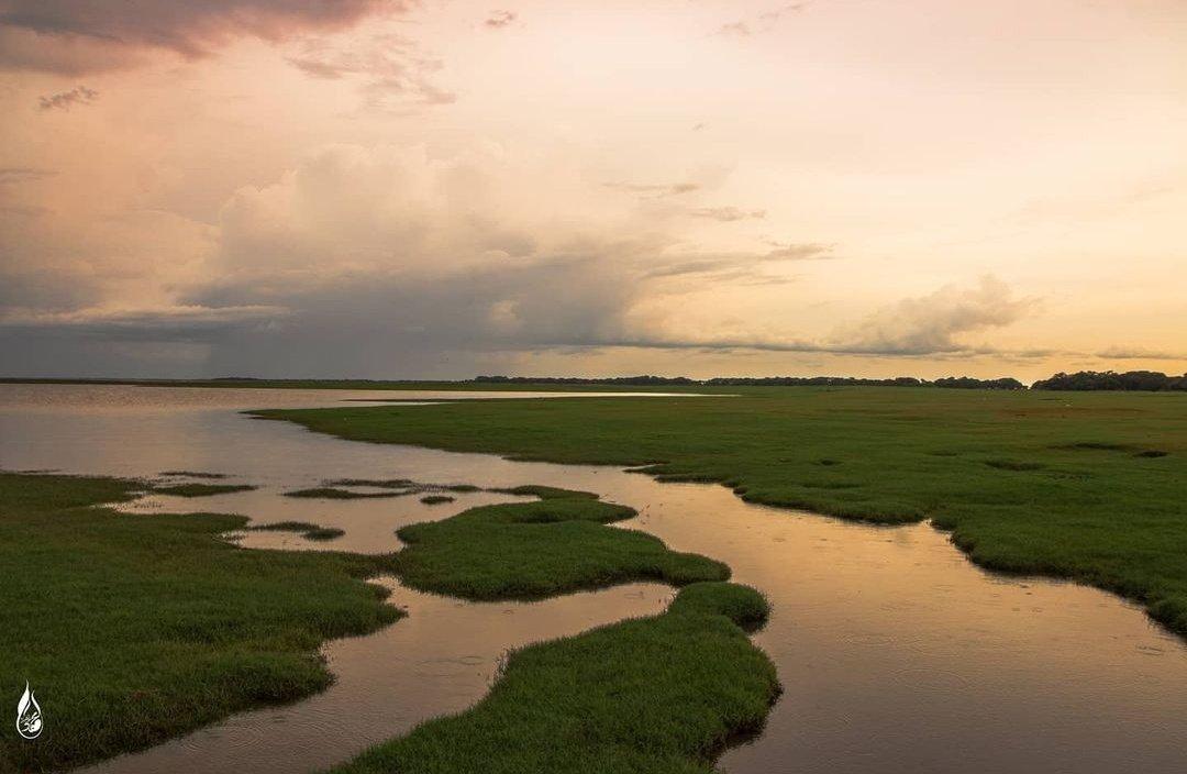 وتذكروا في كل يوم....أن لنا وطنٌ جميل.. فتفائلوا....بالإخضرار...  صباح الخير ❤️  شرق #السودان 🇸🇩  بعدسة /محمود زاهر  #تعرف_على_السودان