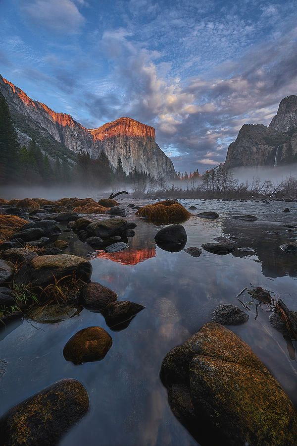 Art for the WaLLS!  #yosemite #California  #landscapelovers #artlovers #photography #photooftheday #wallart #amexlife #landscapephotography #picoftheday #photooftheweek #decor #naturelovers #nature #art4sale #artistry #creative #amazing