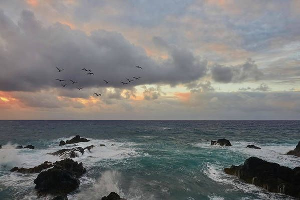Art for the Walls!   #home #amazing #art #landscapephotography #artlover #travel #photooftheday #picoftheday #artworks #amex #naturelovers #landscapelovers #hawaii #art4sale #AmexLife #Mastercard #wallart #nature #home #fineartamerica #photooftheweek