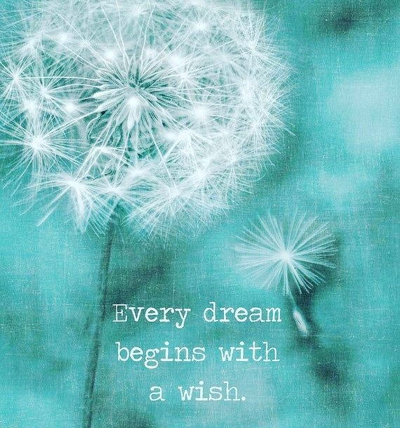 Truth❣️  #dream #dreambig #truth #believe #believeinyourself #love #letsdothis #livelaughlove #wishes #youareamazing #happy #heartisfull #myheartisfull #smile #laugh #happiness #author #tanyazaufi #alloverthemap