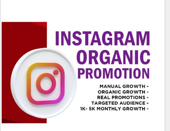 I will grow your Instagram account organically.   #instagram #account #instagood #follow #photography #love #canada #photooftheday #new #travel #money #picoftheday #like #nature #usa #beautiful #like4like #art #makemoney #photo #miami #travelphotography
