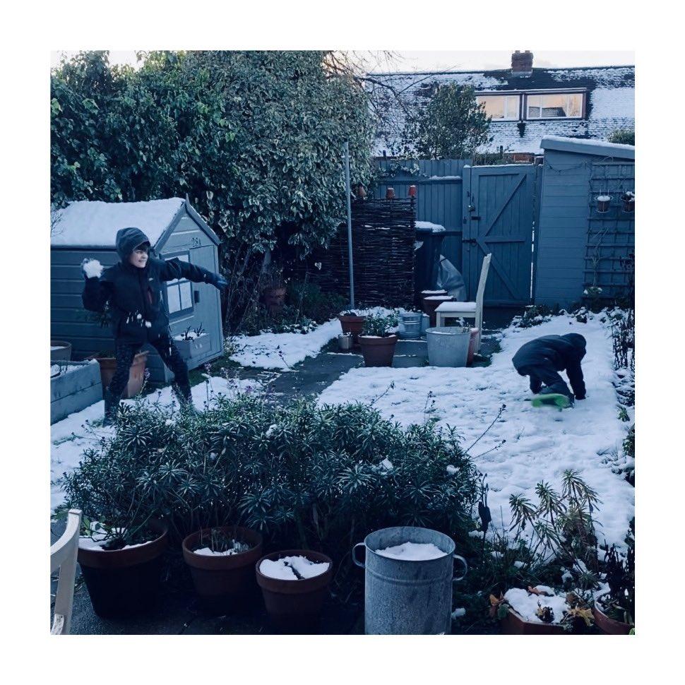 My boys having a snowball fight before their morning school zoom #snowballfight #bruhs #homeschool #jan2021 #cheshiregarden #posnerandposner #brothers https://t.co/EnZE6FTryp