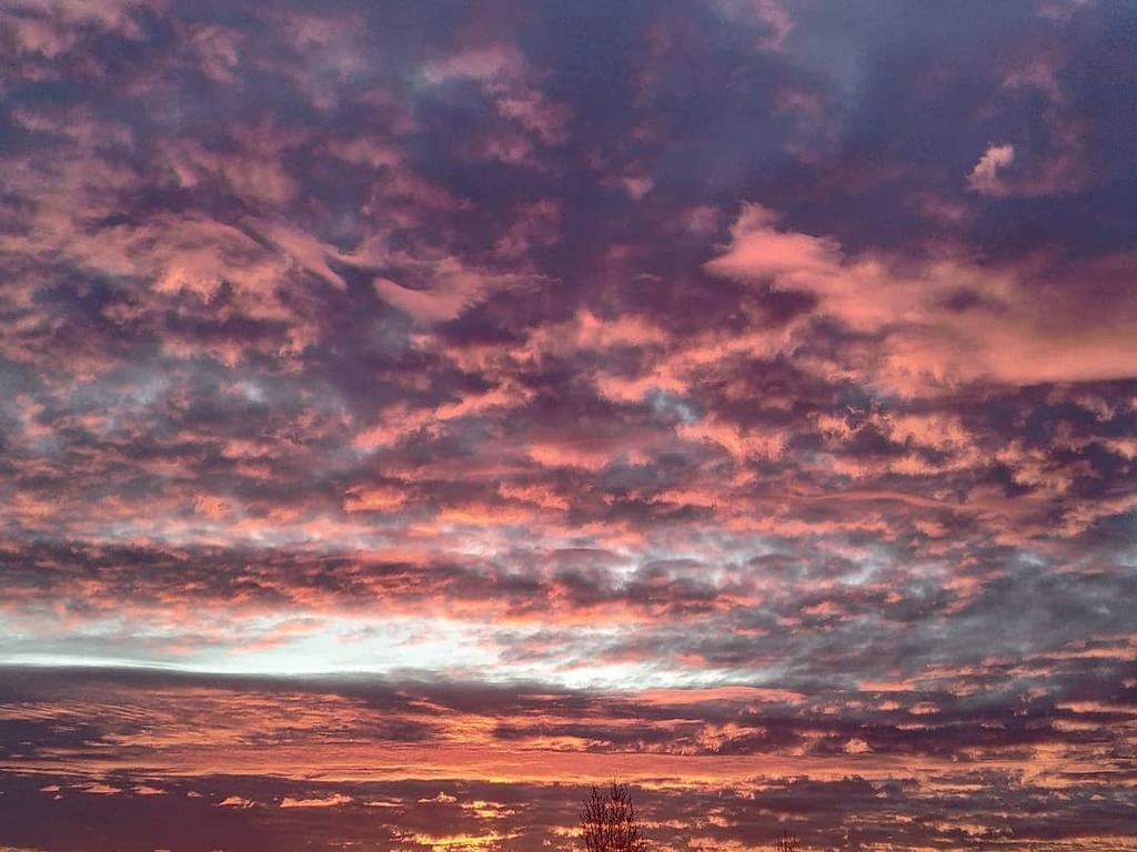 No filter 8AM #sky #wintersky #pinksky #morninglight #toulousemavillerose #toulouseartiste #newhope #savetheplanet #saveculture #dawnthoughts