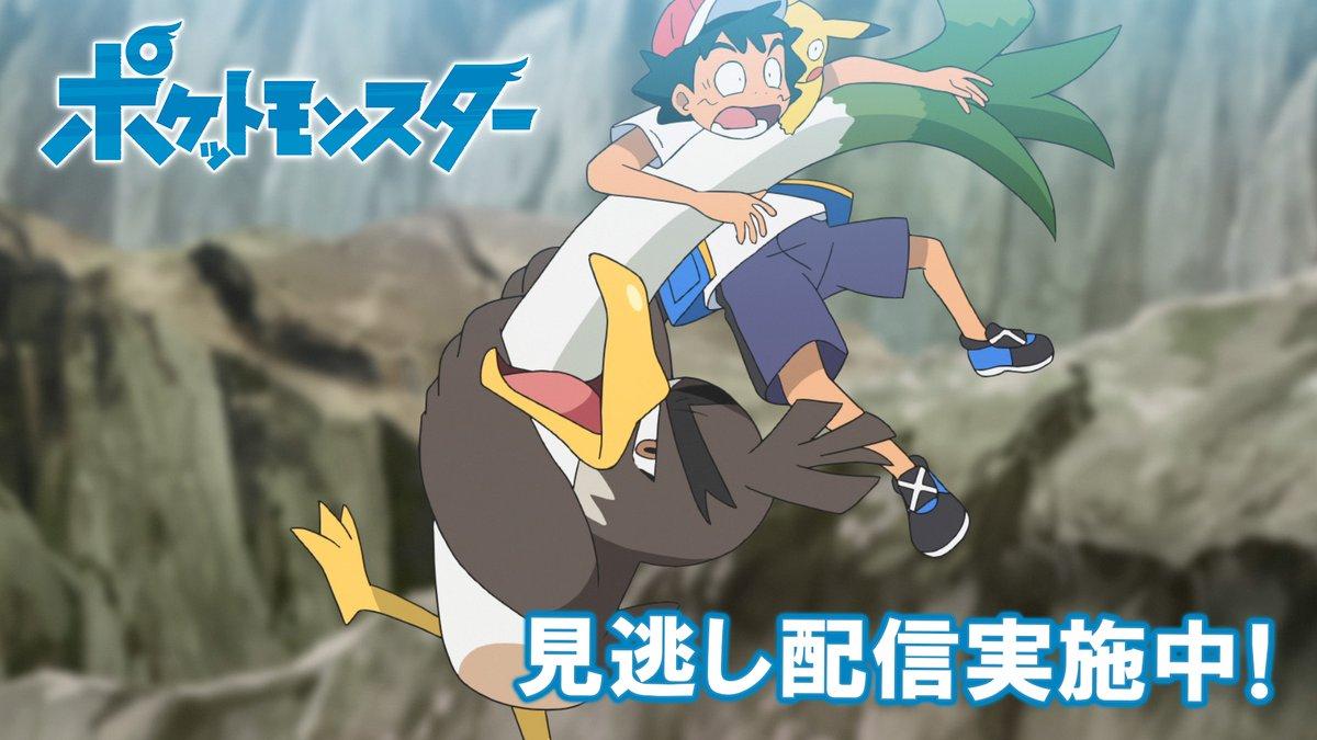 ポケモン公式YouTubeチャンネルでは、アニメ「ポケットモンスター」の見逃し配信を行っているよ! 前回のお話は「カモネギ大いなる試練!」。 明日1月22日(金)よる6時55分からの最新話の放送前に、これまでのサトシとゴウの冒険も見てみてね!  #アニポケ