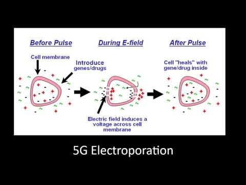 Side effects? Sounds like electroporation. #ZAYNxKAI #RHOC #RHOSLC #BernieSanders #StockMarket